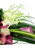 roses, calla lilies, freesia