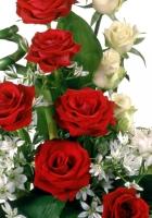 roses, callas, flowers