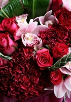 roses, carnations, orchids