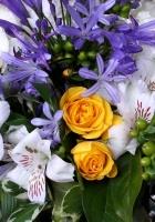 roses, freesia, alstroemeria