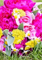 roses, peonies, daisies