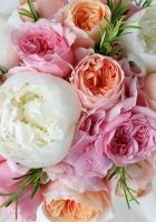 roses, peonies, flowers