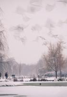 snow, nature, sky