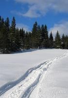 snow, trail, winter