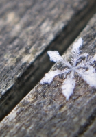 snowflake, surface, wooden