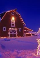 snowman, garlands, party