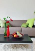 sofa, lamp, rug