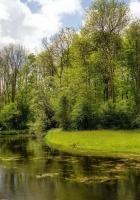 summer, river, nature