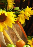 sunflowers, shopping, leaves