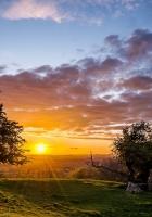 sunset, trees, landscape