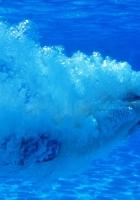 swimming, sportsman, under water