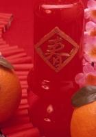 tangerines, branch, flowers