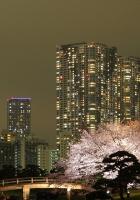 tokyo, building, night