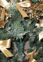tree, needles, ribbons