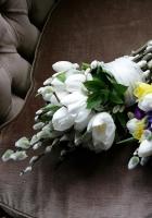 tulips, daffodils, willow