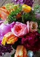 tulips, lilacs, ranunkulyus