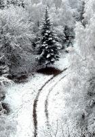 winter, road, snow