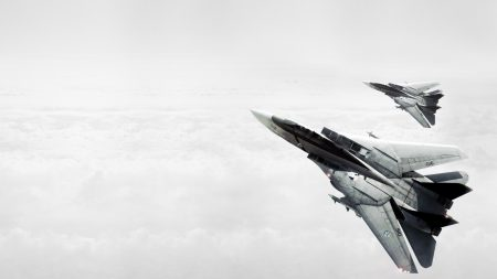 ace combat, fighters, couple
