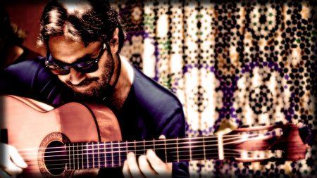 al di meola, guitar, bristle
