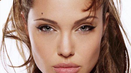 angelina jolie, celebrity, brunette