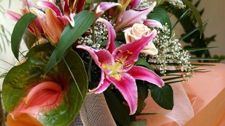 anthurium, lilies, gypsophila