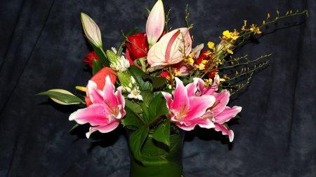 anthurium, roses, flowers