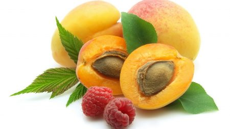 apricot, raspberry, stones