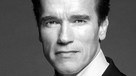 arnold schwarzenegger, actor, governor