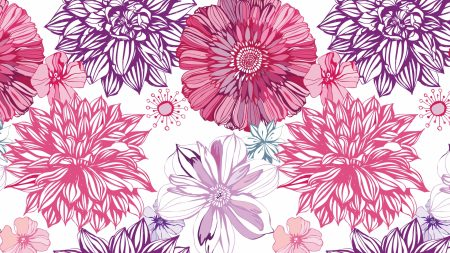 asters, patterns, backgrounds