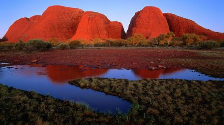 australia, canyons, grass