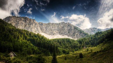 austria, mountains, wood