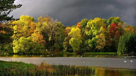 autumn, clouds, pond