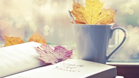 autumn, leaves, book