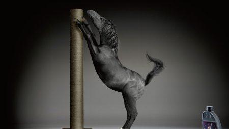 avia motor oil, horse, pillar