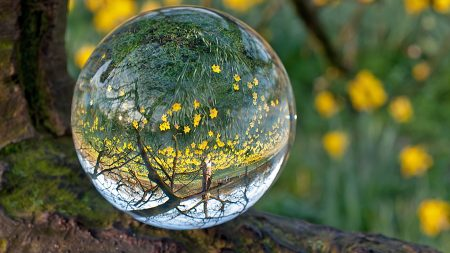 ball, glass, transparent