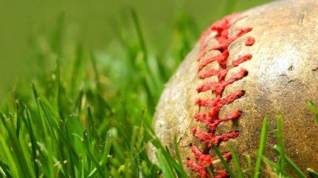 ball, grass, joint