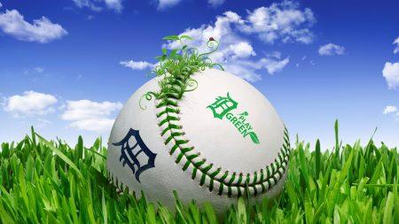 ball, grass, lawn