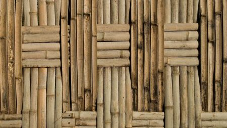 bamboo, background, surface