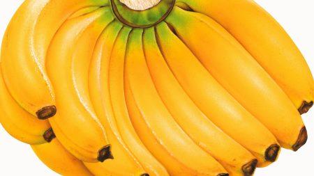 bananas, cluster, fruit