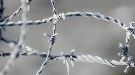 barbed wire, frost, metal