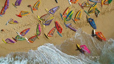 beach, board, windsurfing