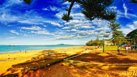 beach, sand, swing