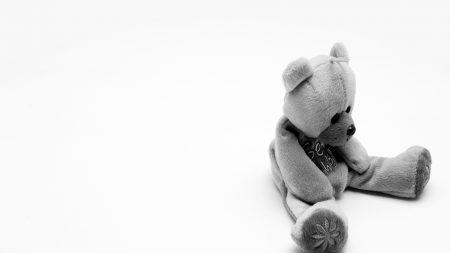 bear, toy, soft