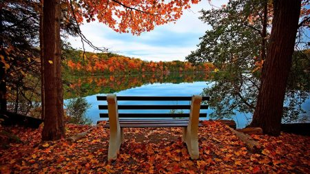 bench, autumn, river