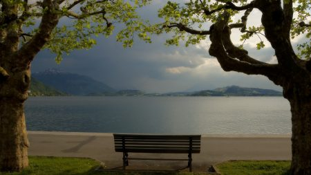 bench, coast, lake