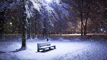 bench, snowfall, winter