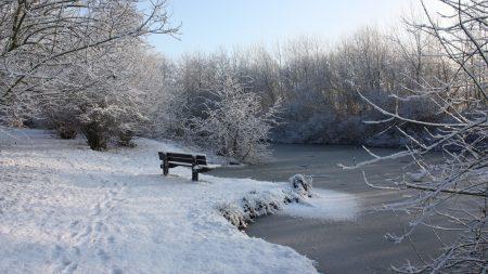 bench, winter, snow