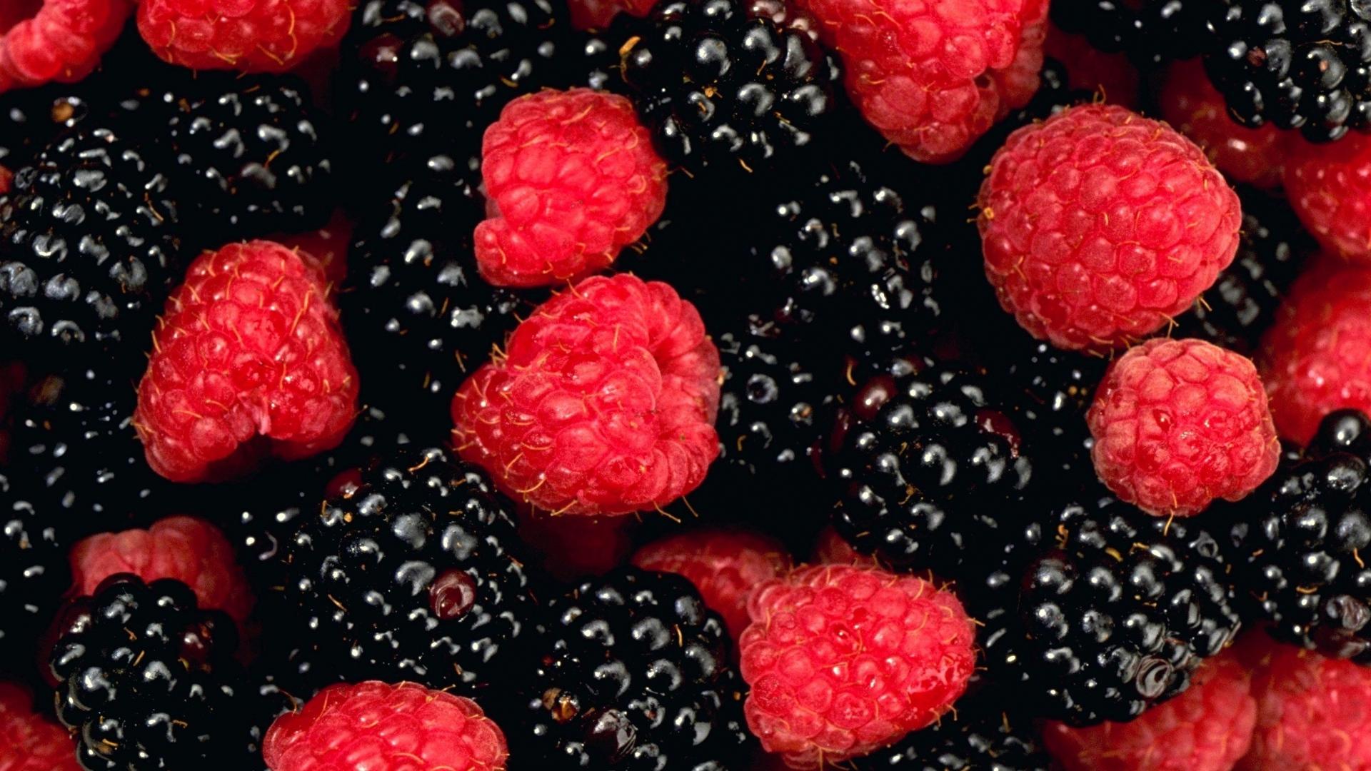 Download Wallpaper 1920x1080 Berry Raspberry Blackberry Allsorts Red Blac Full Hd 1080p Hd Background