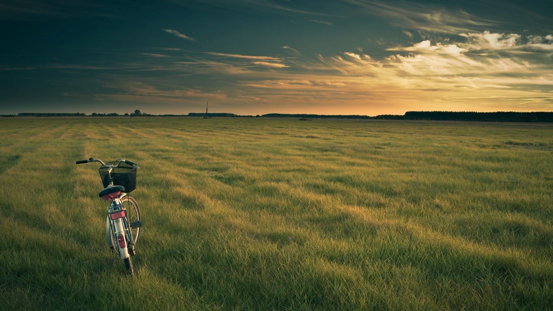 Wallpaper Bicycle Field Grass Evening