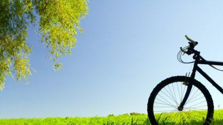 bike, field, grass
